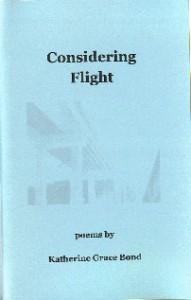 Considering Flight